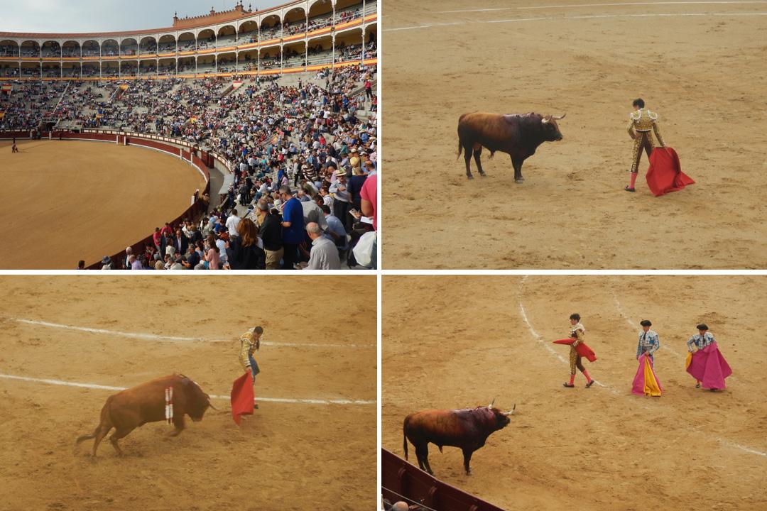 Corrida di Madrid